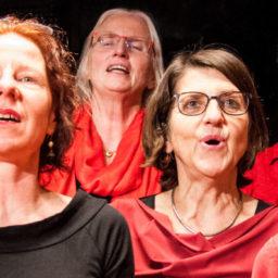 Frauenchor Solothurn